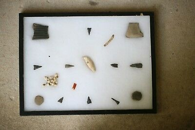 Rare Early Bear Tooth/Discs/Shells/Points Indian Artifacts Authentic Frame #63
