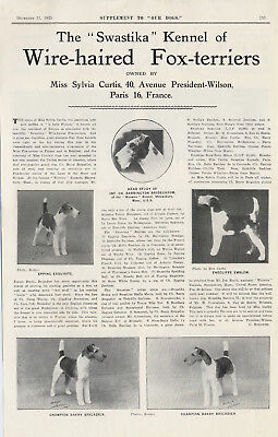 WIRE FOX TERRIER DOG BREED ADVERT PRINT PAGE CASFALA KENNELS OUR DOGS 1944