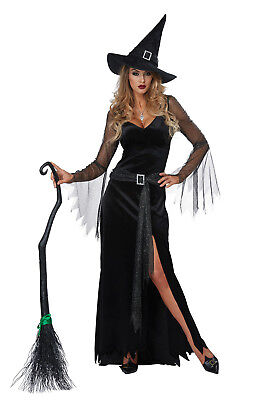 Sexy Rich Witch Adult Women Halloween Costume