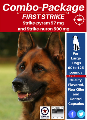 Flea Treatment Package Flea Killer (6) and Control (6) for Large Dogs