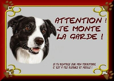 Pancarte Attention Chien Plastifiee Border Collier 1