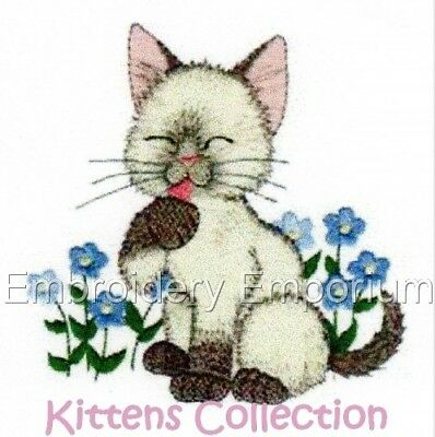 Kittens Collection - Machine Embroidery Designs On Cd