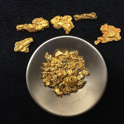 Rich Paydirt Placer Gold Panning Concentrates Nuggets Flakes Fine Bullion Dredge