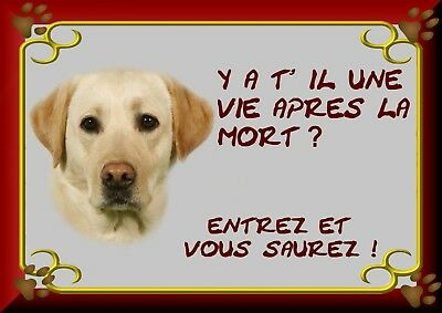 Pancarte Attention Chien Plastifiee Labrador Creme 3