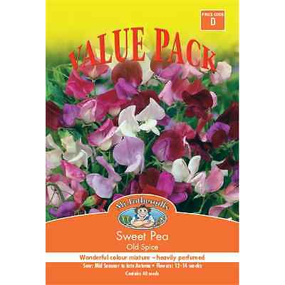 Mr Fothergill's Old Spice Sweet Pea Value Seed Pack