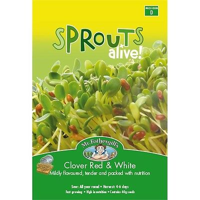 Mr Fothergill's Sprouts Alive Clover Red and White Seeds