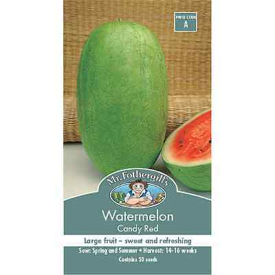 Mr Fothergill's Candy Red Watermelon Vegetable Seeds
