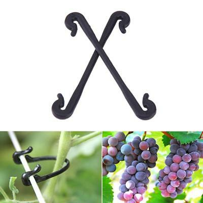 100/200pcs Durable Grafting Clips Plant Vines Vegetable Tendril Gardening Tool