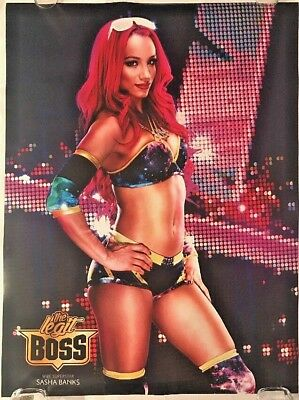 Framed Print Picture Poster Sasha Banks Becky Lynch WWE Diva Irish Superstar