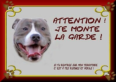 Pancarte Attention Chien Plastifiee Staffordshire 1