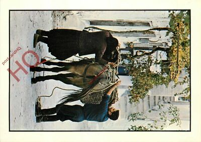 Picture Postcard::Greece, Loading A Working Horse / Donkey