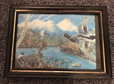 Ducks on a Pond - Lenticular 3D 4x6 Picture in Metal Frame