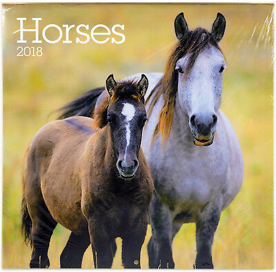 """Horses ⚫ 2018 Calendar ⚫ by Turner/Carousel/Lang (12"""" x 24"""" when opened)"""