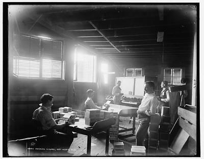Packing cigars,industrial facilities,workers,interiors,Key West,Florida,FL,1880