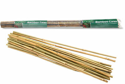 6 Pcs Pack of BAMBOO STICKS For Plant SUPPORT STRUCTURE Or Frame