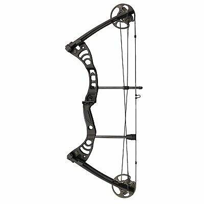 "SAS Scorpii 55 Lb 29"" Compound Bow Hunting Target Shooting Archery BowFishing"