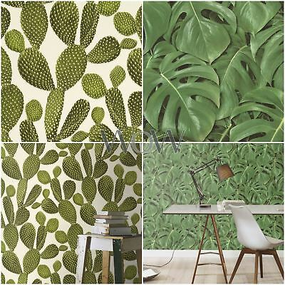 Rasch Plants Wallpaper - Cheese Plant Leaf 441802 & Cactus 441000