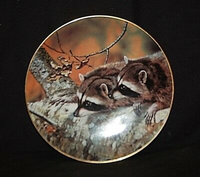 Fascination Collector Plate 1989 Our Woodland Friends by W.S. George 1722 C