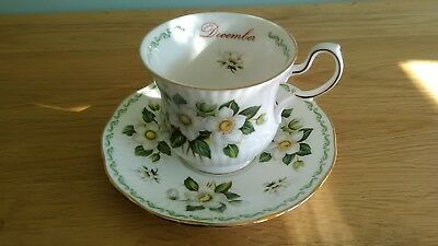 QUEENS Fine Bone China 'Flowers of the Month'  December Cup and Saucer