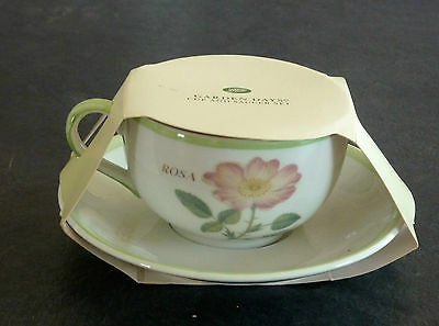 Judith Glover Made Exclusively for Boots Garden Days Cup & Saucer -- BRAND NEW