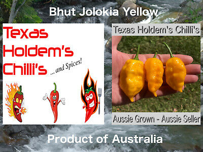 Bhut Jolokia (Ghost) Yellow Chilli 5 Seeds: Extreme Heat & awesome flavour Rare