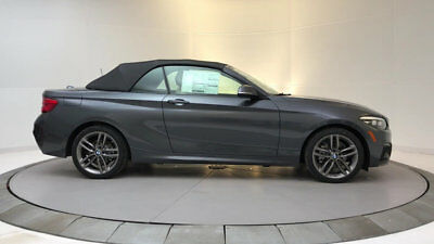 BMW 2 Series 230i xDrive 230i xDrive 2 Series 2 dr Convertible Automatic Gasoline 2.0L 4 Cyl Mineral Gray