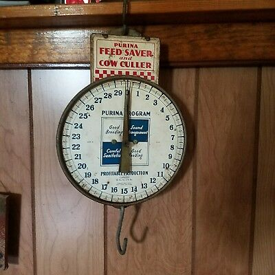 OLD COUNTRY STORE ADVERTISING PURINA FEED SAVER AND COW CULLER SCALE  sign