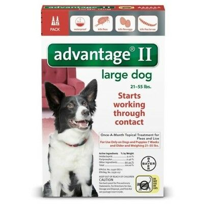 Bayer ADVANTAGE II, Large Dogs 21-55 lbs, Flea Control,Two Month Supply, 2 Doses