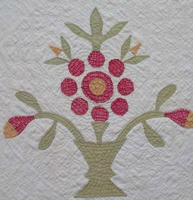 EARLY c1850 Antique Flower Tree Topiary Applique QUILT PIECE 22x22