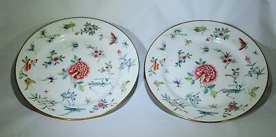 PAIR Antique Chinese famille rose insect & flower porcelain plate
