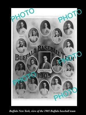 Old Large Historic Photo Of Buffalo New York, The 1905 Buffalo Baseball Team