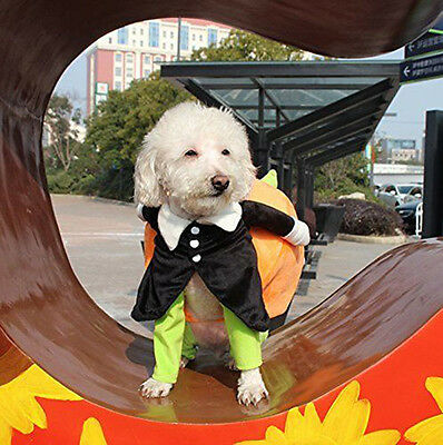 Funny Carrying Pumpkin Pet Dog Cat Clothes Costume Fancy Puppy Apparel Jacket