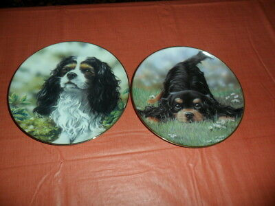 2 Dog Plates  Cavalier King Charles Spaniel Play Time & Little Prince