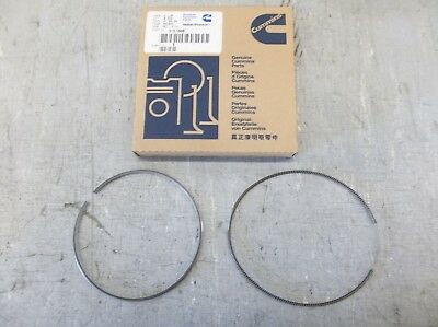 Cummins Piston Oil Ring Set #3161808 (3102367)