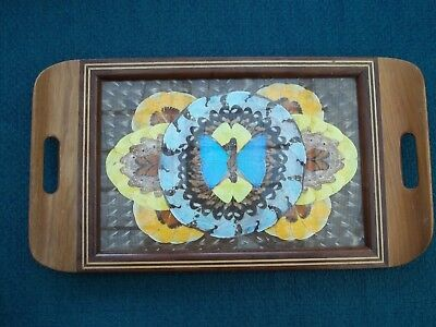 Vintage Real Butterfly Wing Tea Serving Tray