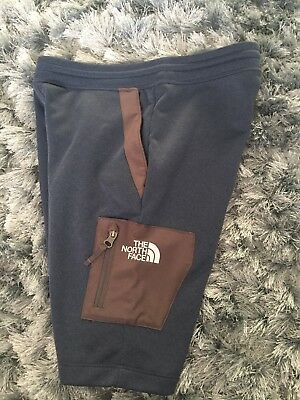 Boys Youth/Junior The North Face Shorts Size Large (blue & grey)