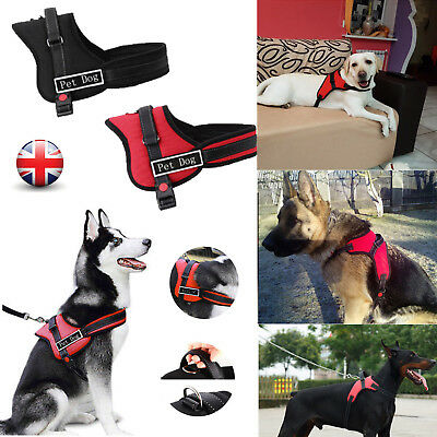 No-pull Dog Harness Outdoor Adventure Pet Vest Padded Handle Small Extra Large