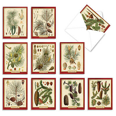 M10011XS PINING FOR CHRISTMAS: 10 Christmas Note Cards.: 10 Christmas Cards