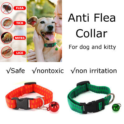 Pet Dog Neck Collar Strap Protection Ring Cat Anti Flea Tick Mite Louse Remedy