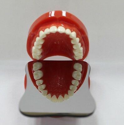 Dental Intraoral Orthodontic Photographic Mirror Rhodium Occlusa one-sided