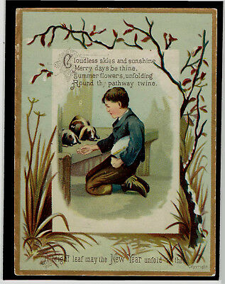victorian new year greetings card boy with long eared rabbits