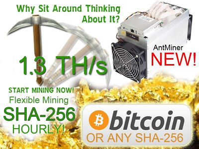 8 hours 1300 GH/s 1.3 TH/s bitcoin mining contract antminer rent fast start