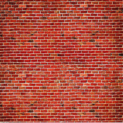 10X10FT Vinyl Photography Background Backdrop Studio Photo Props Red Brick Gift