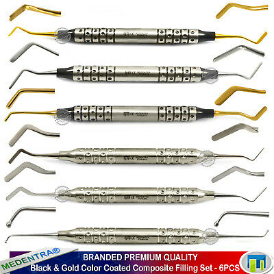Gold & Black Dental Filling Composite Flat Plastic Spatulas Ball Burnishers 6PCS