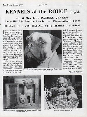 """Bullmastiff Dog Breed Kennel Advert Print Page """"Of The Rouge"""" Dog World 1959"""