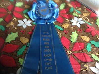 New York State Plantation Walking Horse Club Open Show First Place Ribbon