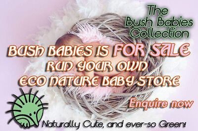 eCommerce Eco Organic Baby web store for SALE All Setup inc functional eBay shop