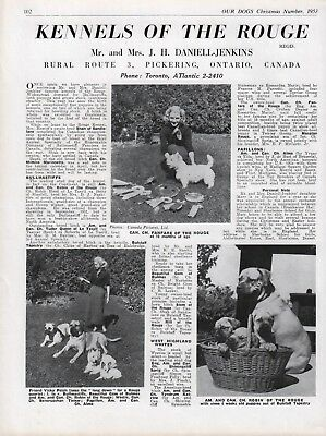 """Bullmastiff Dog Breed Kennel Advert Print Page """"Of The Rouge"""" Our Dogs 1953"""
