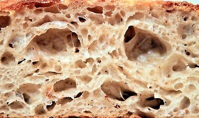 SAN FRANCISCO WHARF SOURDOUGH STARTER yeast bread mix very active many recipes @