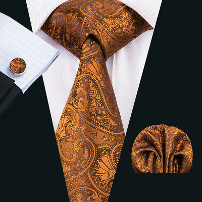 USA Silk Mens Ties Classic Paisley Necktie Gold Orange Brown Tie Set Party